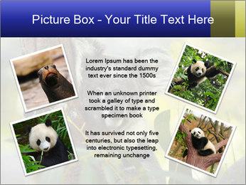 0000080237 PowerPoint Template - Slide 24