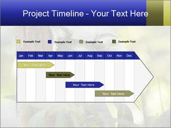 0000080237 PowerPoint Template - Slide 25