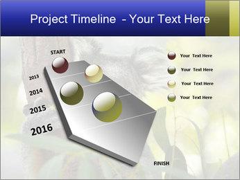 0000080237 PowerPoint Template - Slide 26