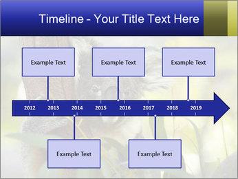 0000080237 PowerPoint Template - Slide 28