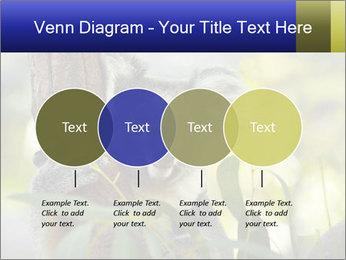 0000080237 PowerPoint Template - Slide 32