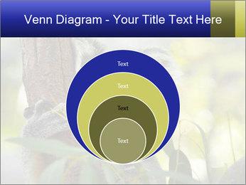 0000080237 PowerPoint Template - Slide 34