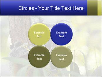 0000080237 PowerPoint Template - Slide 38