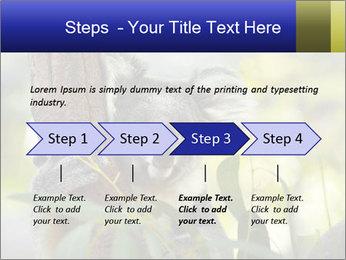 0000080237 PowerPoint Template - Slide 4