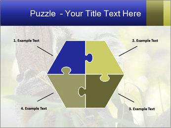 0000080237 PowerPoint Template - Slide 40