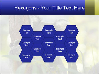 0000080237 PowerPoint Template - Slide 44