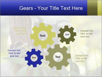 0000080237 PowerPoint Template - Slide 47