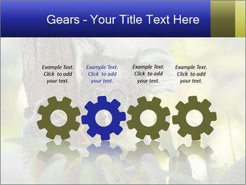 0000080237 PowerPoint Template - Slide 48