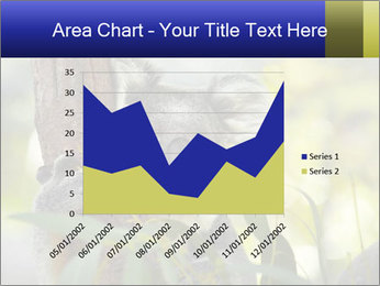 0000080237 PowerPoint Template - Slide 53
