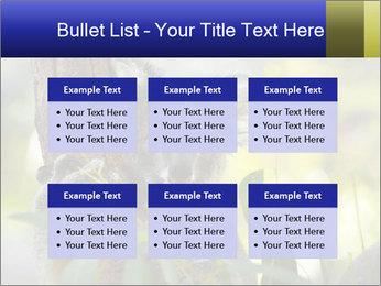 0000080237 PowerPoint Template - Slide 56