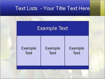 0000080237 PowerPoint Template - Slide 59