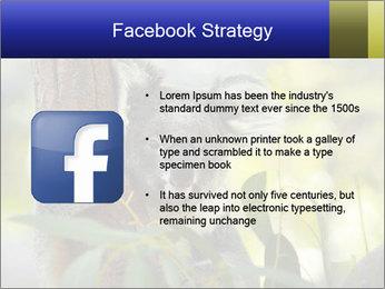 0000080237 PowerPoint Template - Slide 6