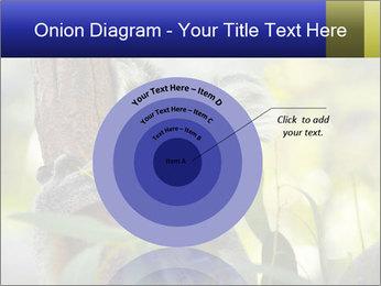 0000080237 PowerPoint Template - Slide 61