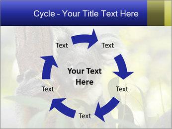 0000080237 PowerPoint Template - Slide 62