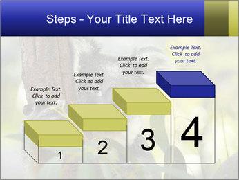 0000080237 PowerPoint Template - Slide 64