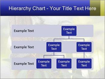 0000080237 PowerPoint Template - Slide 67