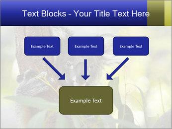 0000080237 PowerPoint Template - Slide 70