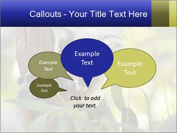 0000080237 PowerPoint Template - Slide 73