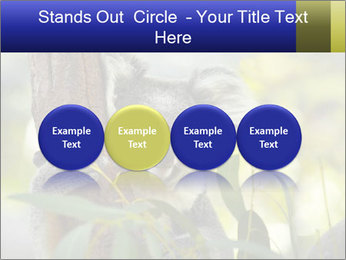 0000080237 PowerPoint Template - Slide 76