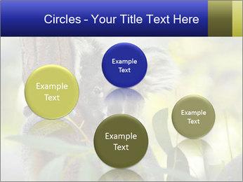 0000080237 PowerPoint Template - Slide 77