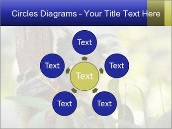 0000080237 PowerPoint Template - Slide 78