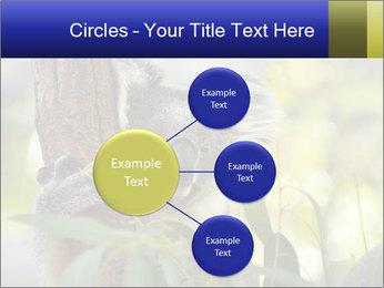 0000080237 PowerPoint Template - Slide 79