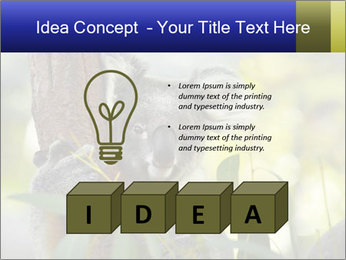 0000080237 PowerPoint Template - Slide 80