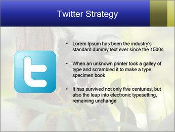 0000080237 PowerPoint Template - Slide 9