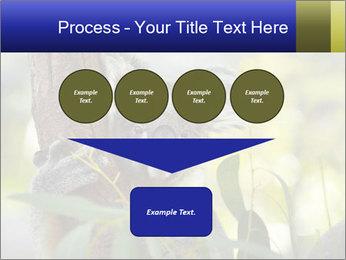 0000080237 PowerPoint Template - Slide 93