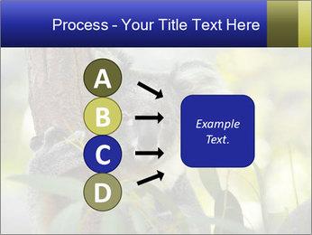 0000080237 PowerPoint Template - Slide 94