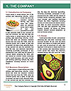 0000080238 Word Template - Page 3