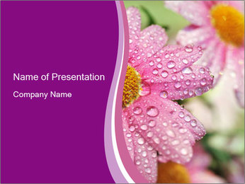0000080240 PowerPoint Template