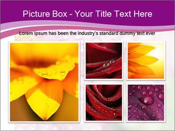 0000080240 PowerPoint Templates - Slide 19