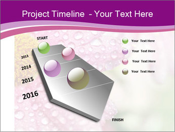 0000080240 PowerPoint Templates - Slide 26