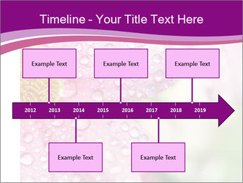 0000080240 PowerPoint Templates - Slide 28