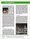 0000080246 Word Template - Page 3
