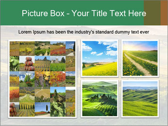 0000080253 PowerPoint Template - Slide 19