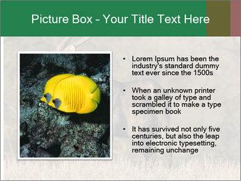 0000080254 PowerPoint Templates - Slide 13