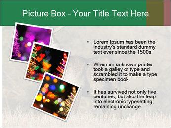 0000080254 PowerPoint Templates - Slide 17