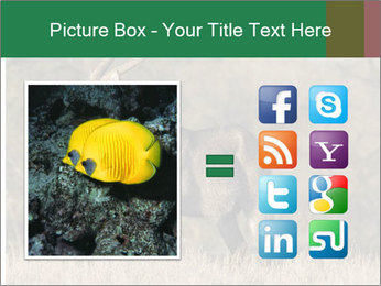 0000080254 PowerPoint Templates - Slide 21