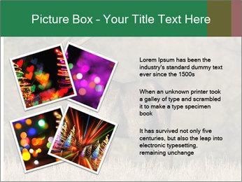 0000080254 PowerPoint Templates - Slide 23