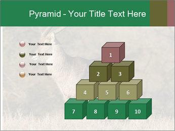 0000080254 PowerPoint Templates - Slide 31