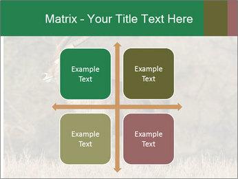 0000080254 PowerPoint Templates - Slide 37
