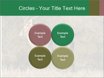 0000080254 PowerPoint Templates - Slide 38