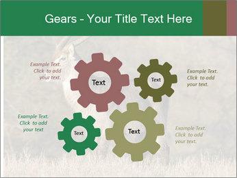0000080254 PowerPoint Templates - Slide 47