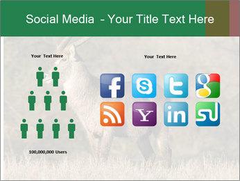0000080254 PowerPoint Templates - Slide 5