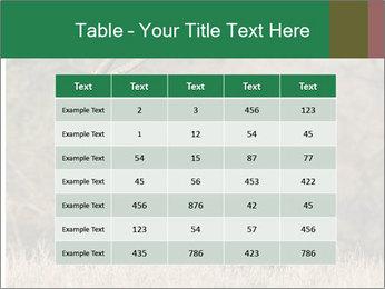0000080254 PowerPoint Templates - Slide 55