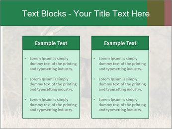 0000080254 PowerPoint Templates - Slide 57