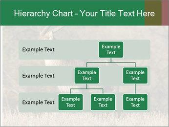 0000080254 PowerPoint Templates - Slide 67