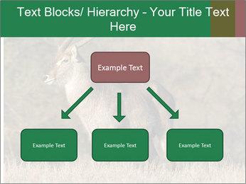 0000080254 PowerPoint Templates - Slide 69